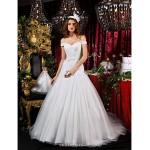 A-line Princess Court Train Tulle Wedding Dress Wedding Dresses