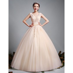 Ball Gown Wedding Dress Champagne Floor Length V Neck Tulle