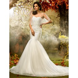 Fit & Flare Plus Sizes Wedding Dress - Ivory Court Train Sweetheart Tulle