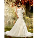 Fit & Flare Plus Sizes Wedding Dress - Ivory Court Train Sweetheart Tulle Wedding Dresses