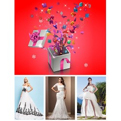 Free Shipping Wedding Dress Lucky Bag With One Bridal Gown And Three Pieces of Bridal Accessories