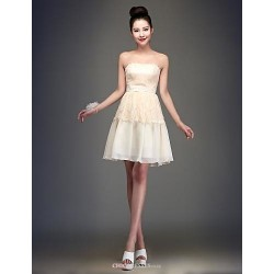 Knee-length Chiffon Bridesmaid Dress - Champagne Ball Gown Strapless