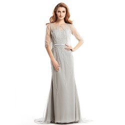 Trumpet Mermaid Mother Of The Bride Dress Silver Sweep Brush Train Half Sleeve Tulle