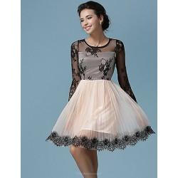 Ball Gown Mother Of The Bride Dress Champagne Knee Length Lace Tulle