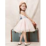 Girl Pink Tulle Party Dresses Flower Girl Dresses