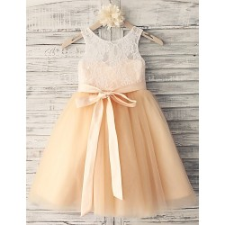 Princess Champagne Knee Length Flower Girl Dress Lace Tulle Sleeveless