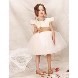 Girl Champagne Princess Dresses