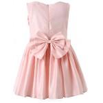 Girl Pink Classical Belle Dresses Flower Girl Dresses