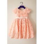 A-line Tea-length Flower Girl Dress - Chiffon Short Sleeve Flower Girl Dresses