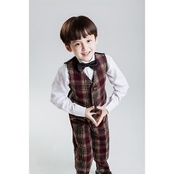 Brown Polyester Ring Bearer Suit 4 Pieces