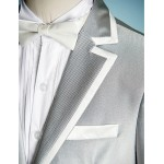 Silver Polyester Ring Bearer Suit - 5 Pieces Flower Girl Dresses