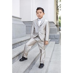 Silver Polyester Ring Bearer Suit 5 Pieces