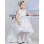 A-line Floor-length/Asymmetrical Flower Girl Dress - Lace/Tulle/Polyester Sleeveless Flower Girl Dresses