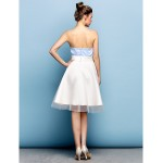Cocktail Party Dress - Sky Blue Plus Sizes / Petite A-line Strapless Knee-length Satin / Tulle Flower Girl Dresses