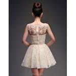 Cocktail Party Dress - Champagne Plus Sizes Princess Scoop Short/Mini Satin / Tulle Celebrity Dresses