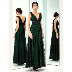 Prom Military Ball Formal Evening Dress Dark Green Plus Sizes Petite A Line V Neck Floor Length Lace Taffeta