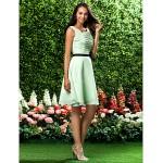 Knee-length Chiffon Bridesmaid Dress - Sage Plus Sizes / Petite A-line / Princess Square Special Occasion Dresses
