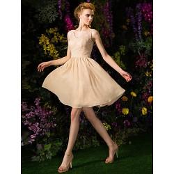 Knee Length Chiffon Lace Bridesmaid Dress Champagne Plus Sizes Petite A Line V Neck