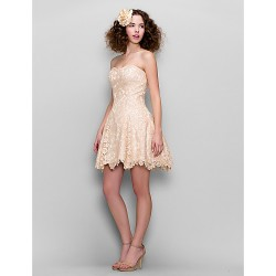 Cocktail Party Dress Champagne Plus Sizes Petite A Line Sweetheart Short Mini Lace