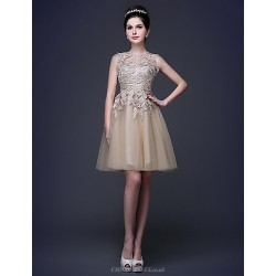 Cocktail Party Dress Champagne Plus Sizes Petite A Line Princess Scoop Knee Length Lace Tulle