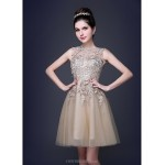 Cocktail Party Dress - Champagne Plus Sizes / Petite A-line / Princess Scoop Knee-length Lace / Tulle Special Occasion Dresses
