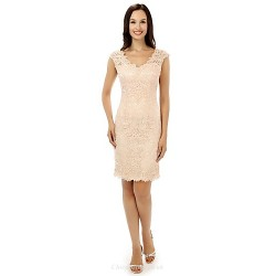 Cocktail Party Dress - Pearl Pink Sheath/Column V-neck Knee-length Lace