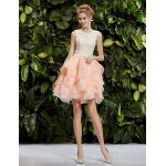 Cocktail Party Dress - Blushing Pink Petite Ball Gown / Princess Straps Knee-length Lace / Organza Special Occasion Dresses