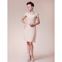 Sheath/Column Plus Sizes / Petite Mother of the Bride Dress - Champagne Knee-length Short Sleeve Chiffon