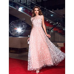 Formal Evening Prom Military Ball Dress Pearl Pink Plus Sizes Petite A Line Jewel Floor Length Tulle