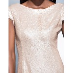Formal Evening Dress - Champagne Plus Sizes / Petite Sheath/Column Scoop Floor-length Sequined Special Occasion Dresses