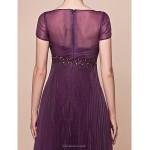 A-line Plus Sizes / Petite Mother of the Bride Dress - Grape Floor-length Short Sleeve Organza Mother Of The Bride Dresses