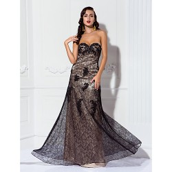 Military Ball / Formal Evening Dress - Champagne Plus Sizes / Petite A-line Sweetheart Floor-length Lace / Stretch Satin