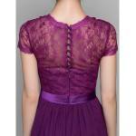 A-line / Sheath/Column Mother of the Bride Dress - Grape Floor-length Short Sleeve Chiffon / Lace Mother Of The Bride Dresses