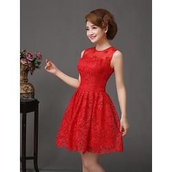 Cocktail Party Dress - Ruby Plus Sizes A-line Jewel Short/Mini Lace