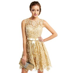 Cocktail Party Dress Champagne A Line Scoop Short Mini Lace