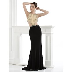 Formal Evening Dress Multi Color Plus Sizes Petite Trumpet Mermaid Spaghetti Straps Floor Length Spandex