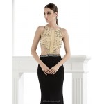 Formal Evening Dress - Multi-color Plus Sizes / Petite Trumpet/Mermaid Spaghetti Straps Floor-length Spandex Special Occasion Dresses