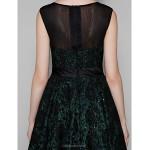 Cocktail Party Dress - Black Plus Sizes / Petite A-line Jewel Short/Mini Lace / Tulle Special Occasion Dresses