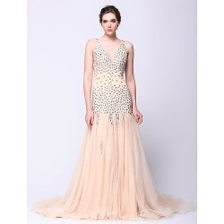 Formal Evening Dress Champagne Fit & Flare V Neck Court Train Tulle