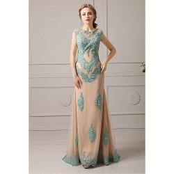 Formal Evening Dress Clover Plus Sizes Petite A Line Jewel Floor Length Lace Tulle