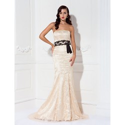 Formal Evening / Military Ball Dress - Champagne Plus Sizes / Petite Trumpet/Mermaid Strapless Sweep/Brush Train Lace