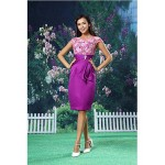 Cocktail Party Dress - Multi-color Sheath/Column Jewel Knee-length Lace / Organza / Satin Special Occasion Dresses