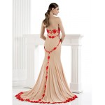 TS Couture Formal Evening Dress - Trumpet/Mermaid Strapless Sweep/Brush Train Tulle Special Occasion Dresses