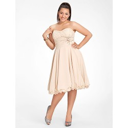 Sweet 16 Cocktail Party Homecoming Dress Champagne Plus Sizes Petite A Line Princess Sweetheart Strapless Knee Length Chiffon