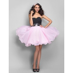Dress - Multi-color Plus Sizes / Petite A-line / Princess Sweetheart Short/Mini Organza / Chiffon