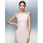 Formal Evening Dress Blushing Pink Plus Sizes Petite Sheath Column Jewel Floor Length Jersey