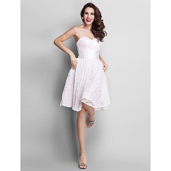 Knee Length Lace Stretch Satin Bridesmaid Dress Blushing PinkPlus Sizes Hourglass Pear Misses Petite Apple Inverted