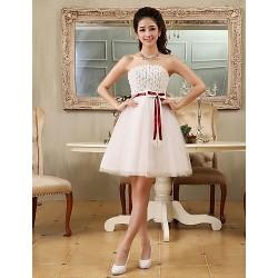 Cocktail Party Dress Ivory Plus Sizes A Line Princess Strapless Short Mini Tulle