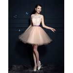 Cocktail Party Dress - Champagne A-line Scoop Short/Mini Tulle Special Occasion Dresses