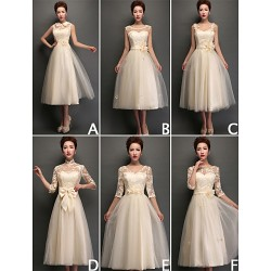 Mix & Match Dresses Tea Length Tulle And Lace 6 Styles Bridesmaid Dresses (3789962)